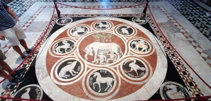 Tarsia lupa scopertura del pavimento del Duomo di Siena