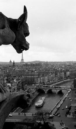 La gargouille de Notre Dame robert doisneau