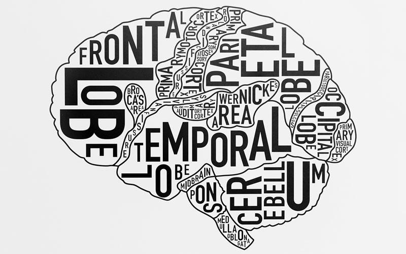 settimana del cervello