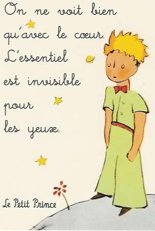 #libriantifiguracce piccolo principe