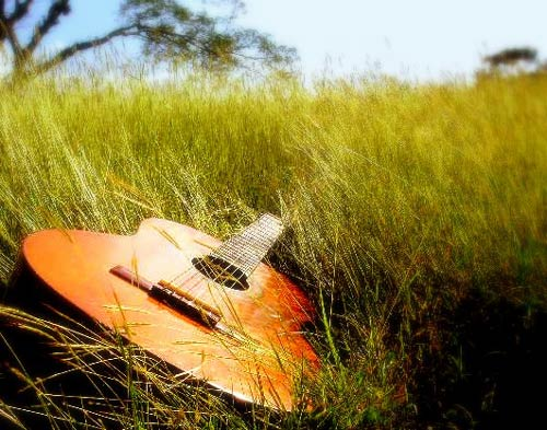 spring-music