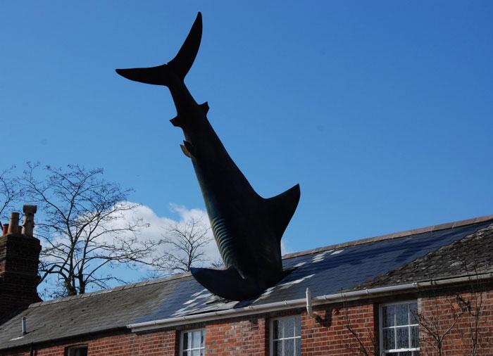 squalo scultura contemporanea